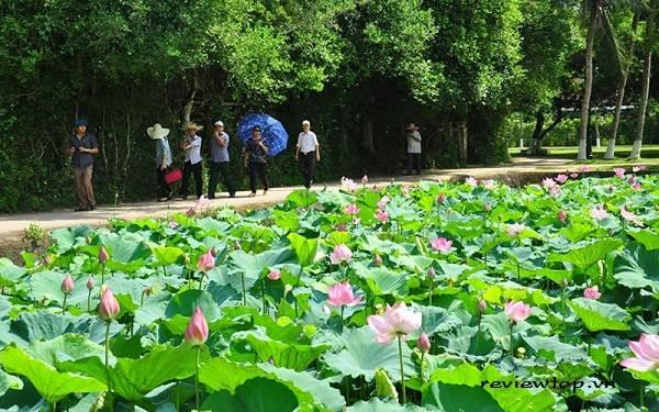 Làng Sen quê Bác – Huyện Nam Đàn, tỉnh Nghệ An