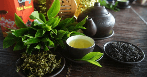 Top 10 thương hiệu Trà ngon nổi tiếng nhất của Việt Nam