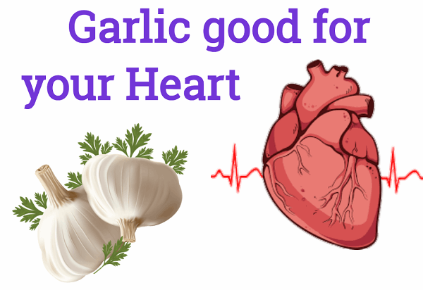 Ăn tỏi giúp giảm nguy cơ mắc bệnh tim mạch