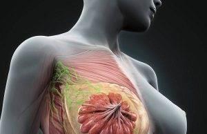 Ung thư vú không nên ăn gì? Thực phẩm người ung thư vú cần tránh xa