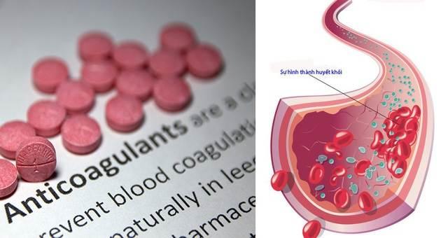 Fucoidan không nên dùng chung với thuốc chống đông máu