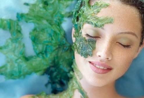đắp tảo tươi để làm đẹp da