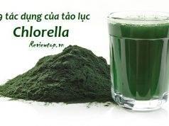 Top 9 tác dụng của tảo Chlorella đối với sức khỏe và làm đẹp