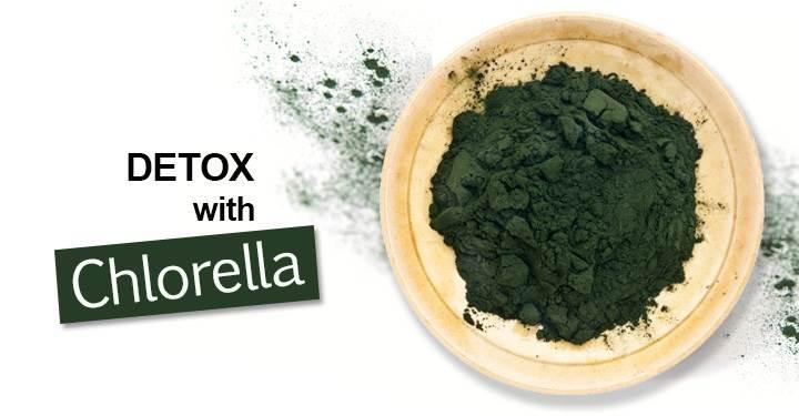 9 tác dụng của tảo Chlorella