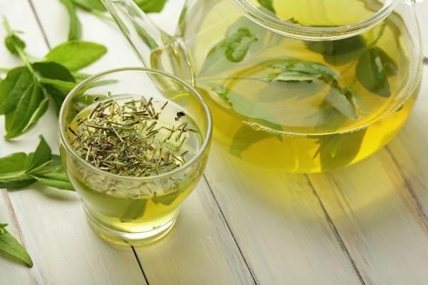 Phương pháp thanh lọc cơ thể detox bằng trà xanh