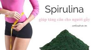4 cơ chế tăng cân với tảo mặt trời spirulina có thể bạn chưa biết