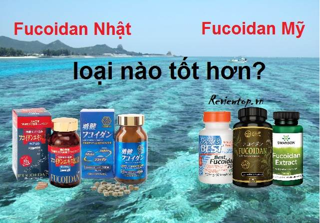 Fucoidan Mỹ hay Nhật tốt hơn dựa vào nhiều yếu tố