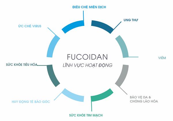 Fucoidan loại nào tốt nhất
