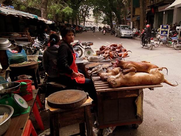 Những món ăn kinh dị nhất Việt Nam-thịt chó