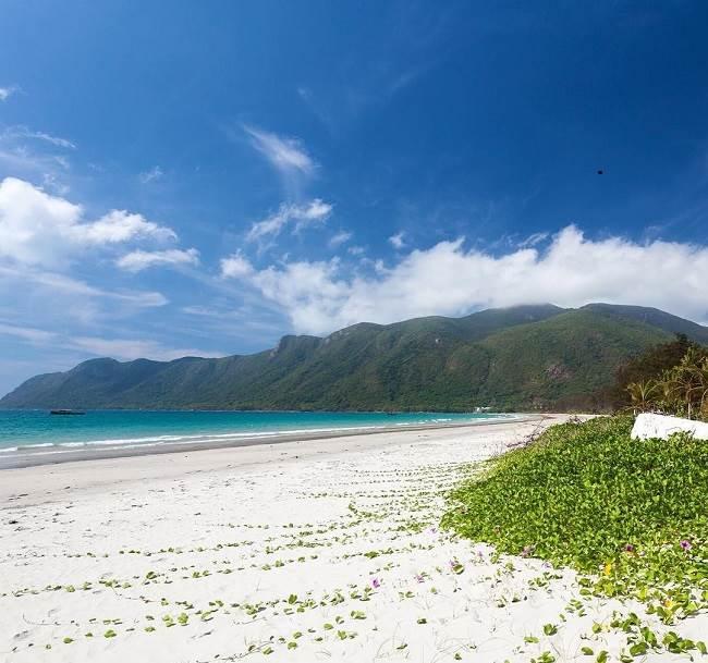 Côn Đảo là nơi hàng đầu để tìm thấy một số các vùng biển nguyên sinh ở Việt Nam
