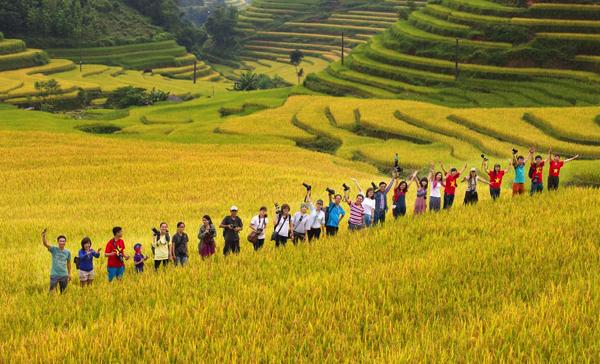 Du khách chụp ảnh tại ruộng bậc thang Hoàng Su Phì mùa lúa chín
